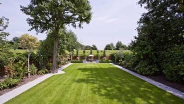 Garden Cleareance
